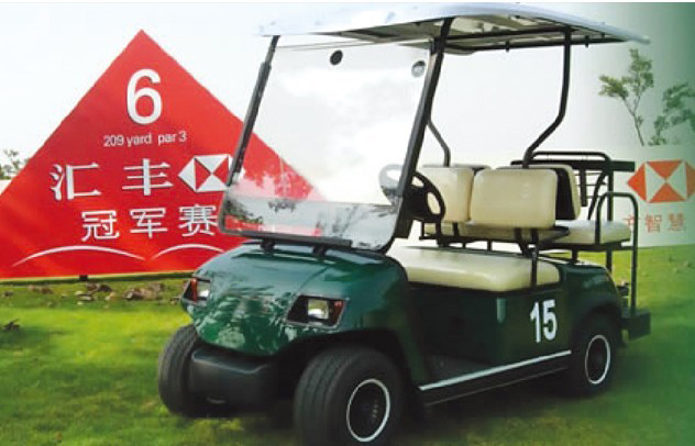 High quality 2 seats golf cart