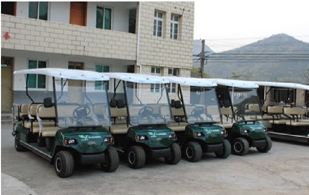 4 seats golf cart, golf car for sale, electric cars for rental
