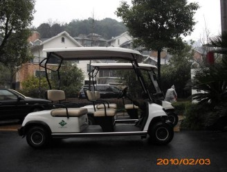 Golf cart customer