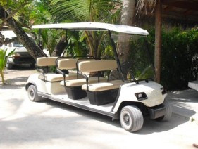 Golf carts customer, club car