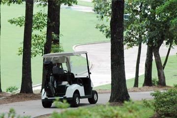 ECARMAS golf cart, how golf cart work?