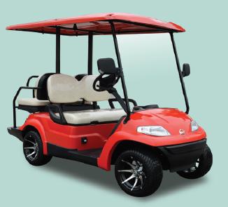 ECARMAS 2 seats golf cart, golf car suppler, China golf cart
