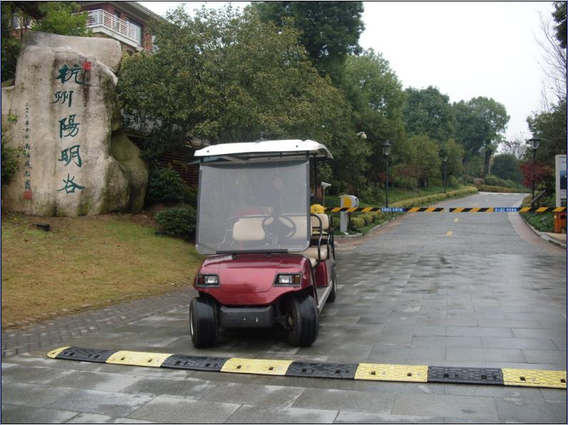 ECARMAS golf cart, sightseeing car