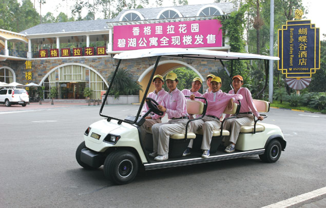 ECARMAS resort car, sightseeing car, car for villa, car for real estate, hotel car, patrol car, electric vehicle supplier