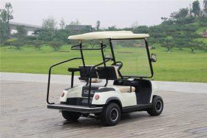 ECARMAS A2 2 seater golf car