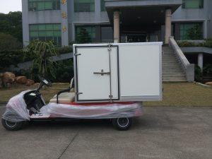 ECARMAS electric cargo car, electric mini cargo vehicle, electric low speed cargo vehicle, electric mini trucks, electric small cargo van