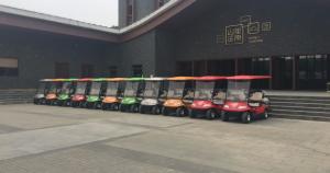ECARMAS 2 seater golf car for golf club
