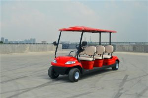ECARMAS A6276 electric golf buggy