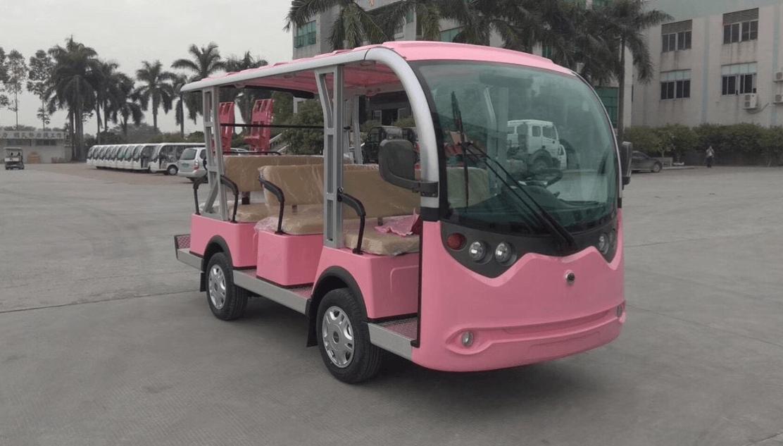 electric tourist carts